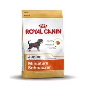 Royal Canin Junior Zwergschnauzer Hundefutter