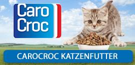 carocroc Katze